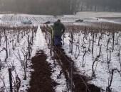 Mise en place des mulchs d'écorces en hiver