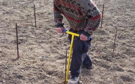 Plantation nouvelle - A la fourchette